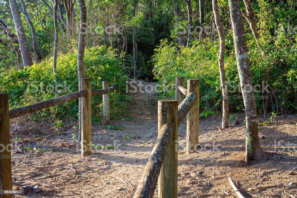 Walking Track With Timber Posts Amongst Sand Dunes Leading Into Bushland - Royalty-free Australia Stock Photo
