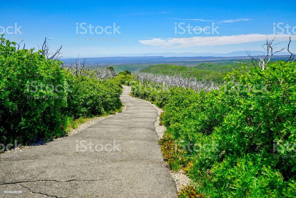 Walking Trail on Top of Colorado Mountain stock photo