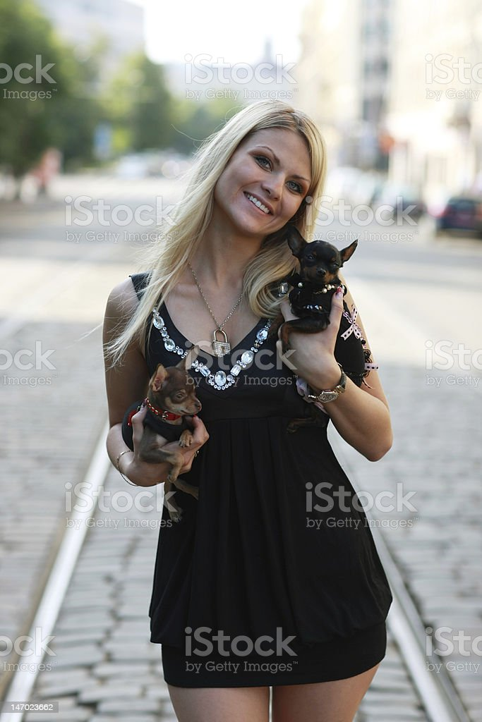Walking with dogs royalty-free stock photo