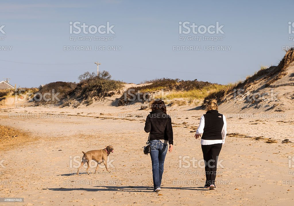 Walking with Friends royalty-free stock photo