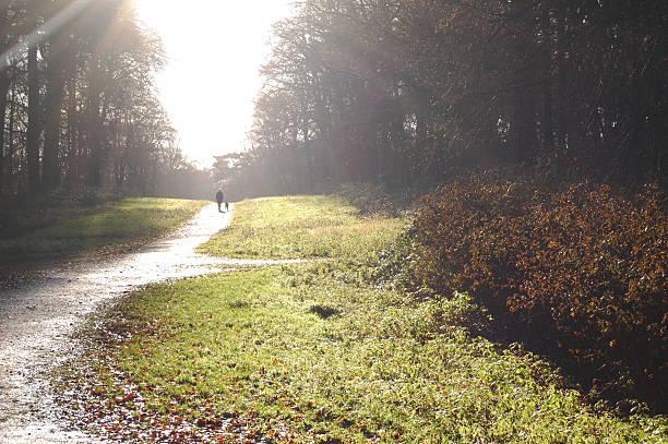 Walking with the dog picture id529650653?b=1&k=6&m=529650653&s=612x612&w=0&h= falimvois3tlkrr8tsj4qa sqqovuqb9kgs4bzdmfq=