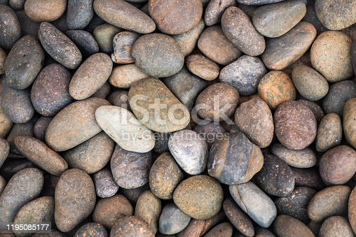 Walkside decorate with oval stone.