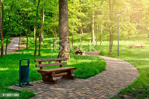 Walkway in a sunny spring park with wooden benches for rest