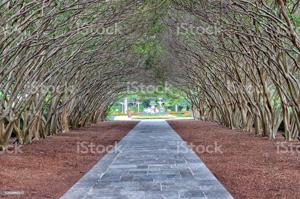Walkway in Dallas Arboretum stock photo