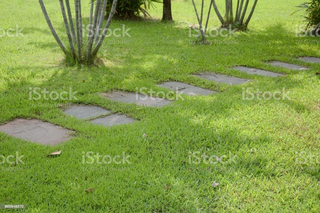 walkway in nature garden - Royalty-free Ao Ar Livre Foto de stock