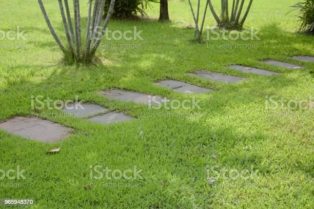 Walkway In Nature Garden - Fotografias de stock e mais imagens de Ao Ar Livre