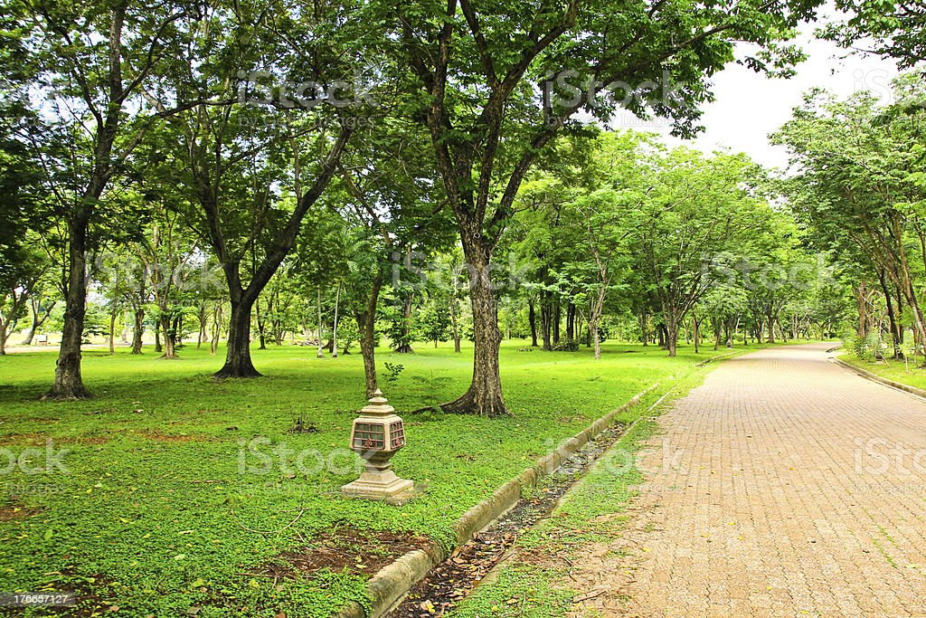 Walkway in the park royalty-free stock photo