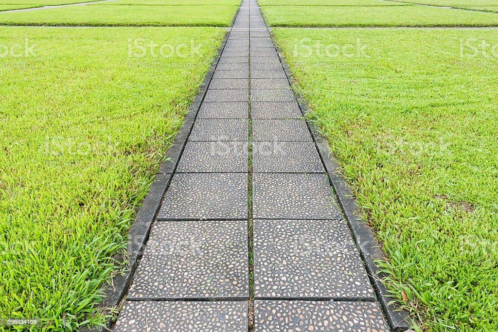 Walkway on green grass in garden photo libre de droits