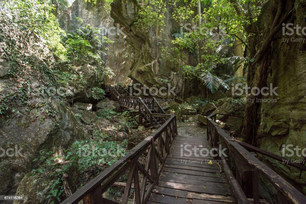 walkway stair  in the forest Chaloem  Rattanakosin National Park, Kanchanaburi, Thailand royalty-free stock photo