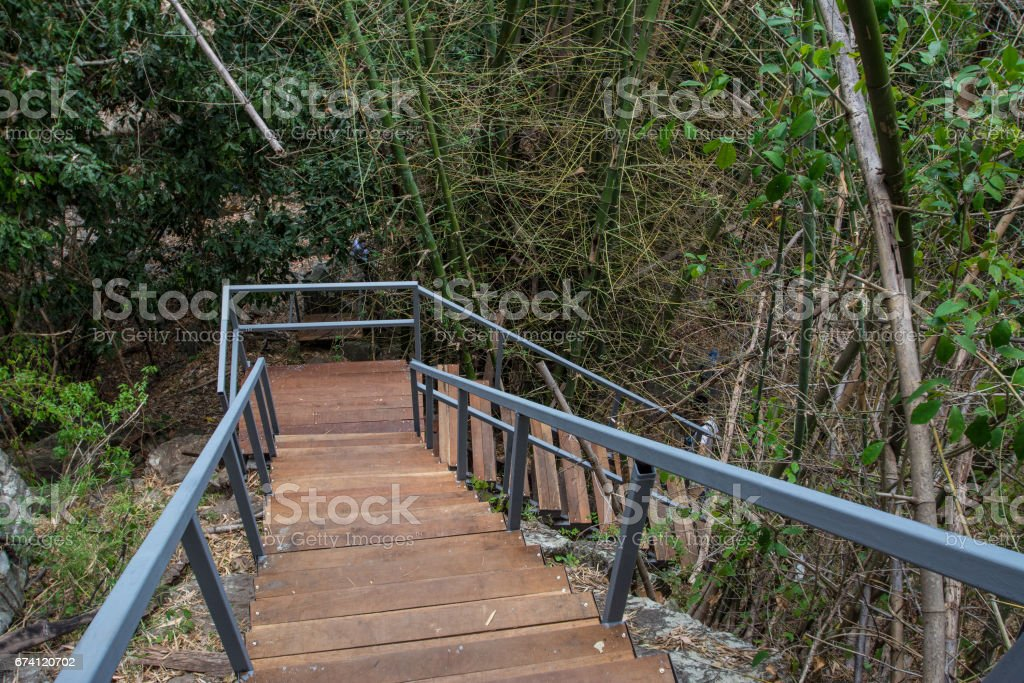 walkway stair  in the forest Chaloem  Rattanakosin National Park, Kanchanaburi, Thailand 免版稅 stock photo