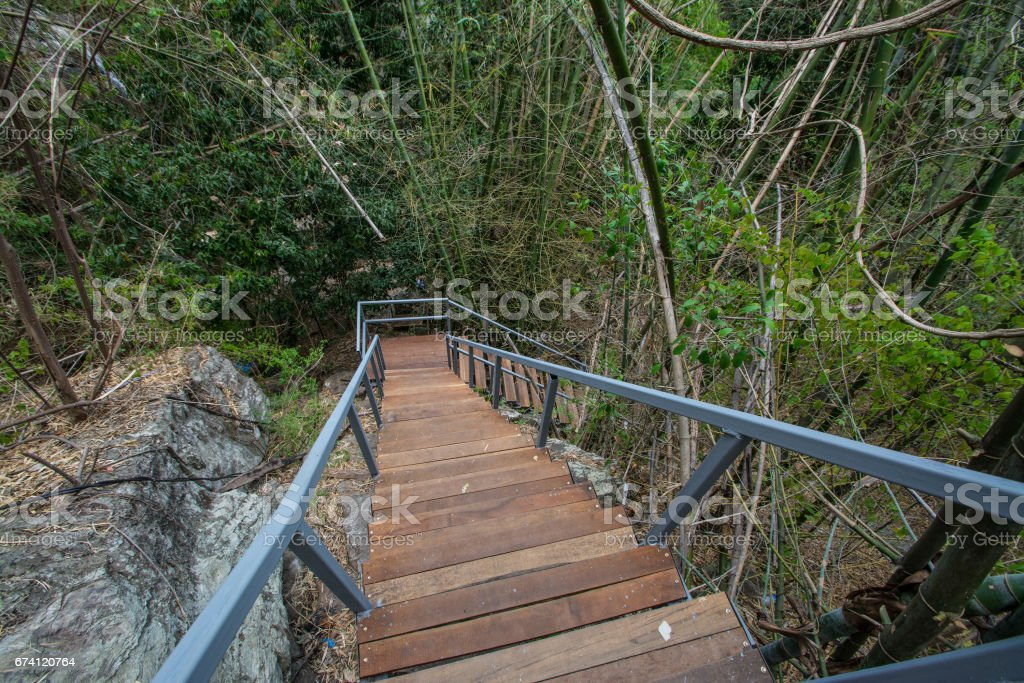 walkway stair  in the forest Chaloem  Rattanakosin National Park, Kanchanaburi, Thailand royalty-free stock photo