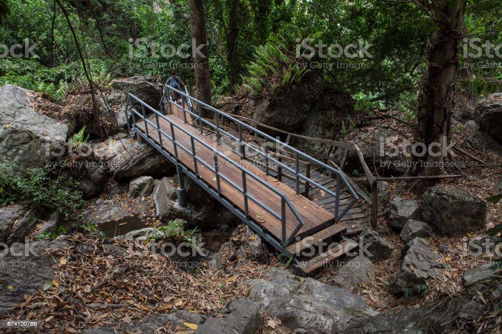 泰國北碧府 Chaloem Rattanakosin 國家公園的走道樓梯 免版稅 stock photo