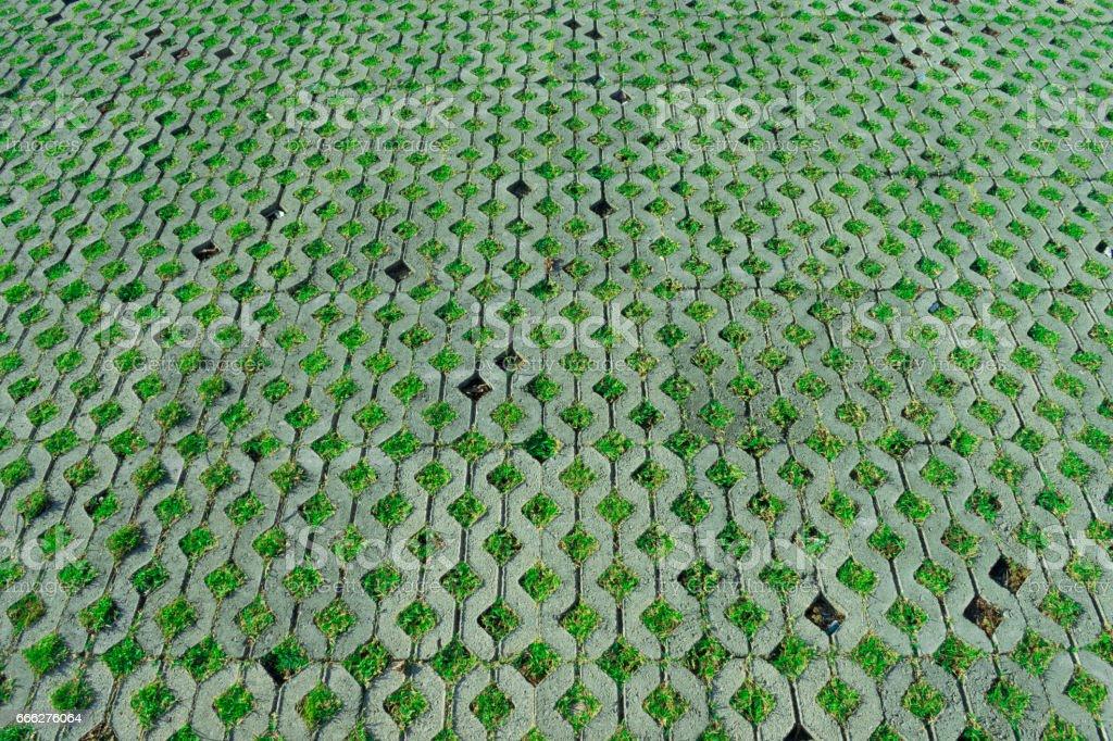 walkway thailand stock photo