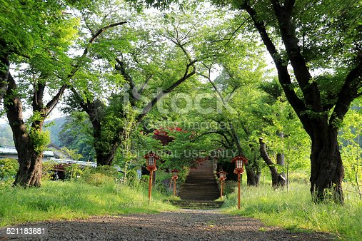 istock Walkway to Chureito Pagoda, Arakura Sengen Shrine in Japan 521183681