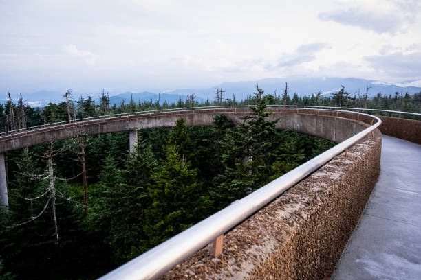 Walkway to Clingmans Dome stock photo