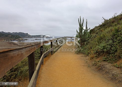 footpath to the coastline in Point Lobos, Carmel CA