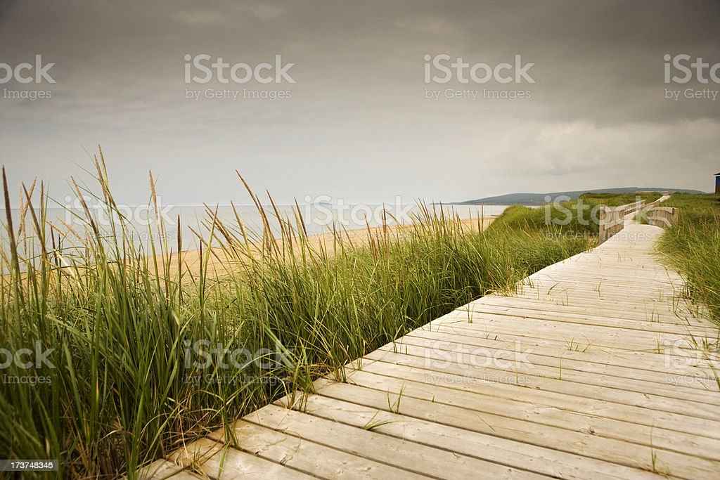Walkway to the beach royalty-free stock photo