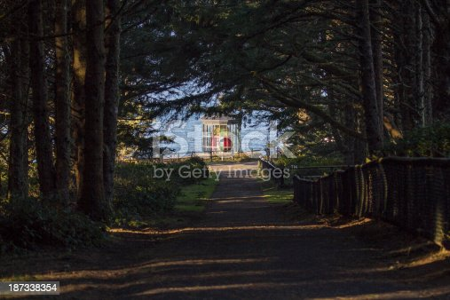 A beautiful walk through a canopy of trees leads to the full view of the lighthouse at Cape Meares.