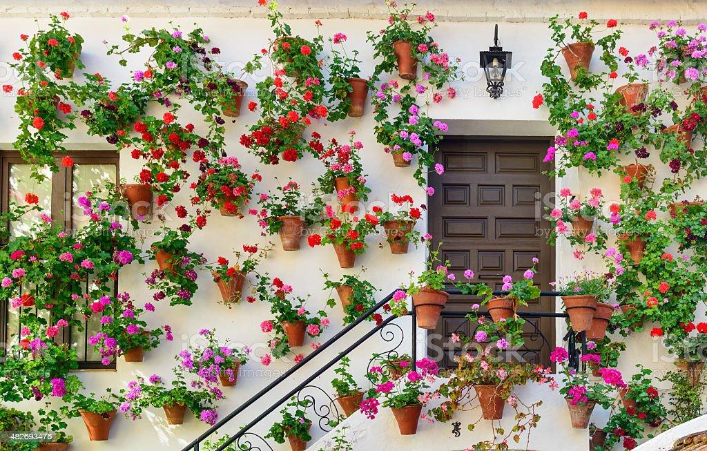 Des décorations murales de fleurs à Cordoue photo libre de droits