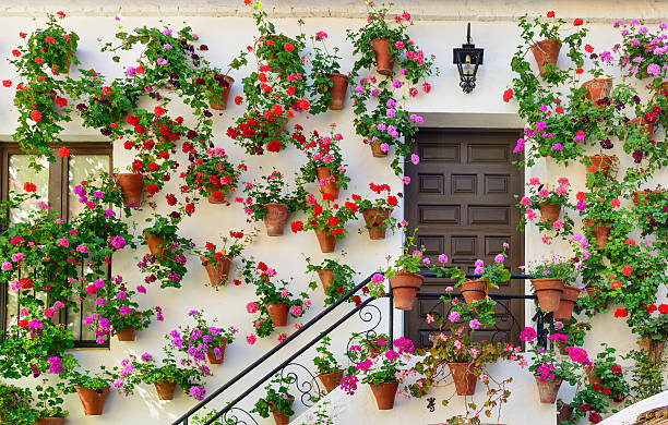 Wall decorations of flowers in Cordoba Wall decorations of flowers in Cordoba, Spain Andalusia.  cordoba spain stock pictures, royalty-free photos & images