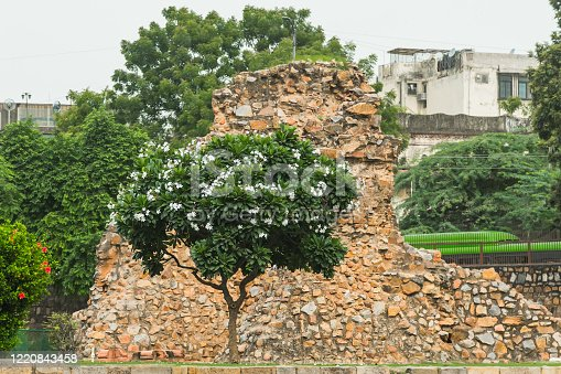 Wall Fragments in Qutub Minar in Delhi