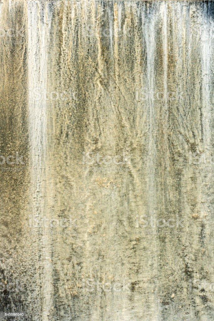 wall moss stock photo