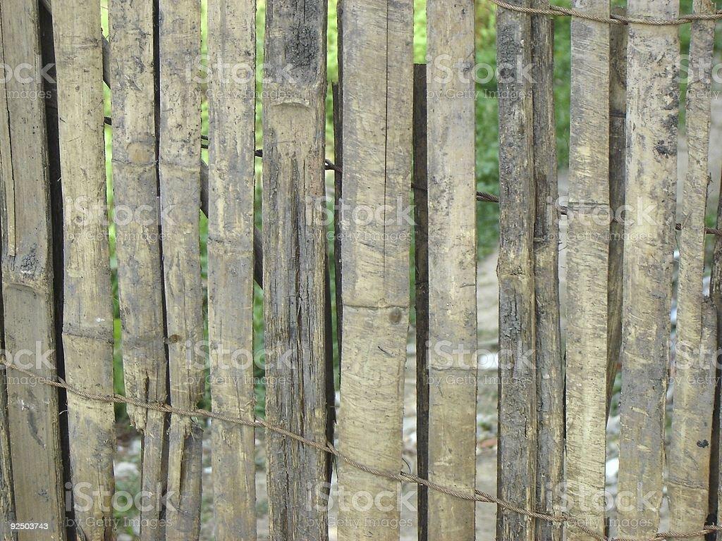 wall of Bamboo royalty-free stock photo