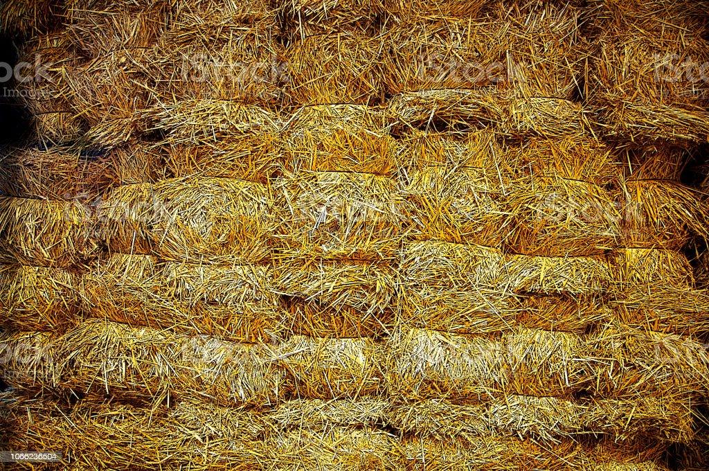 Wall of big bricks of yellow hay stock photo