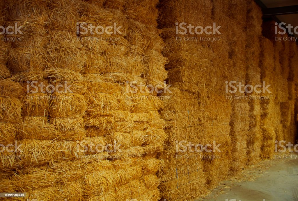 Wall of big packs of hay in the storehouse stock photo