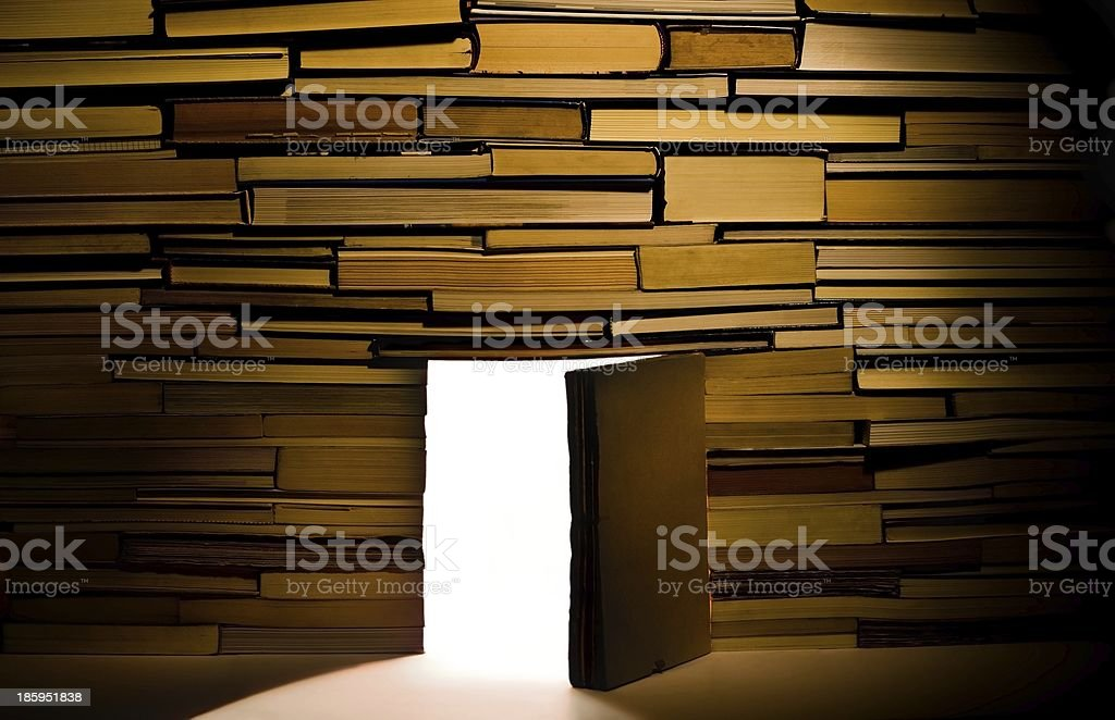 Wall of books royalty-free stock photo