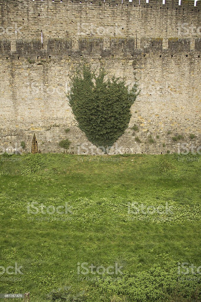 Wall of famous medieval city, Carcassonne, France royalty-free stock photo