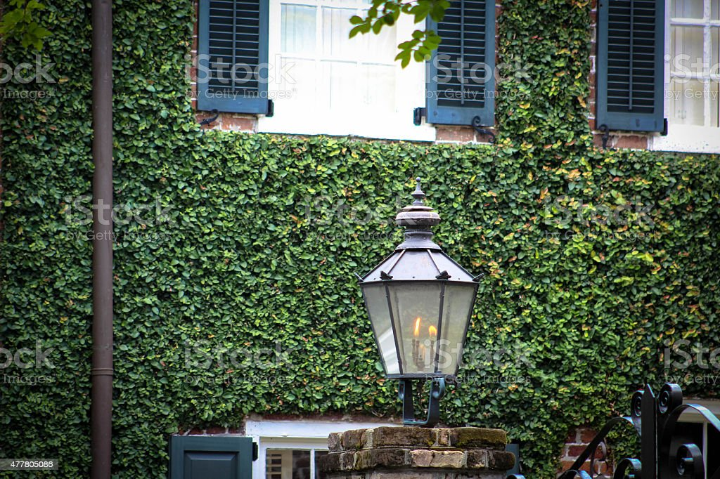 Wall Of Ivy With Gas Lamp stock photo