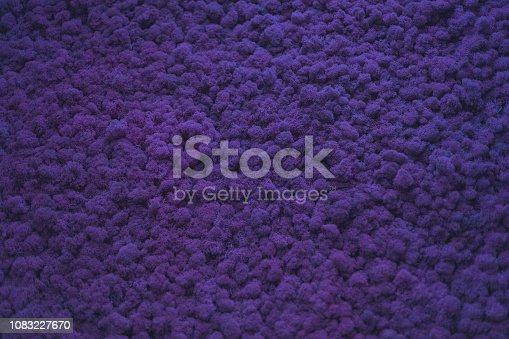 istock Wall of natural moss texture 1083227670