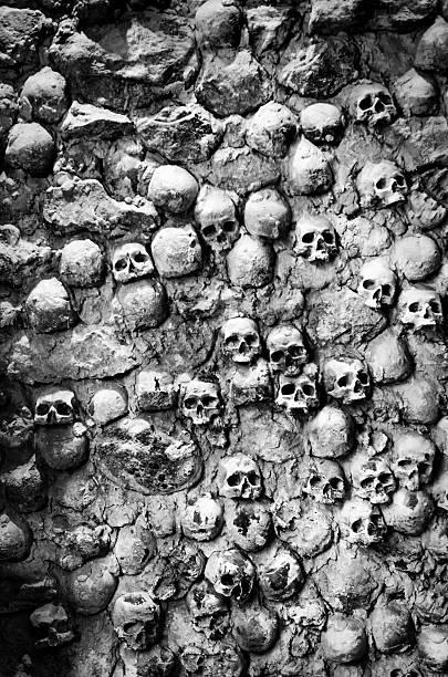 wall of skulls foto