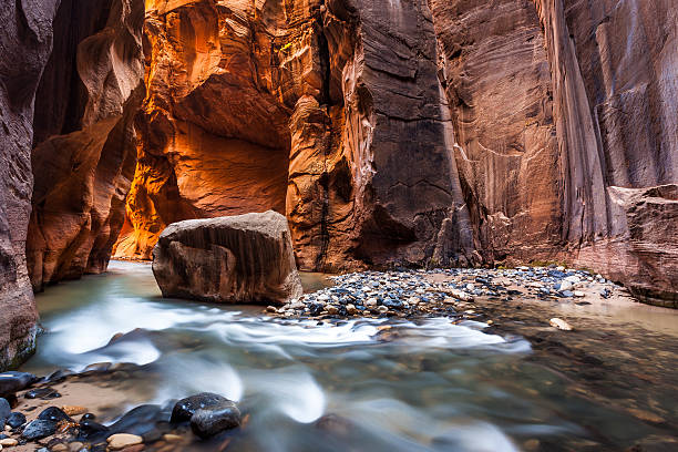 Wall street in the Narrows, Zion National Park, Utah Wall street in the Narrows, Zion National Park, Utah zion national park stock pictures, royalty-free photos & images