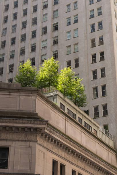 wall street - morgan stanley stock-fotos und bilder