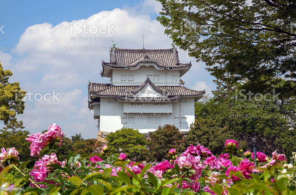 Wall tower of Nagoya castle with peonies royalty-free stock photo