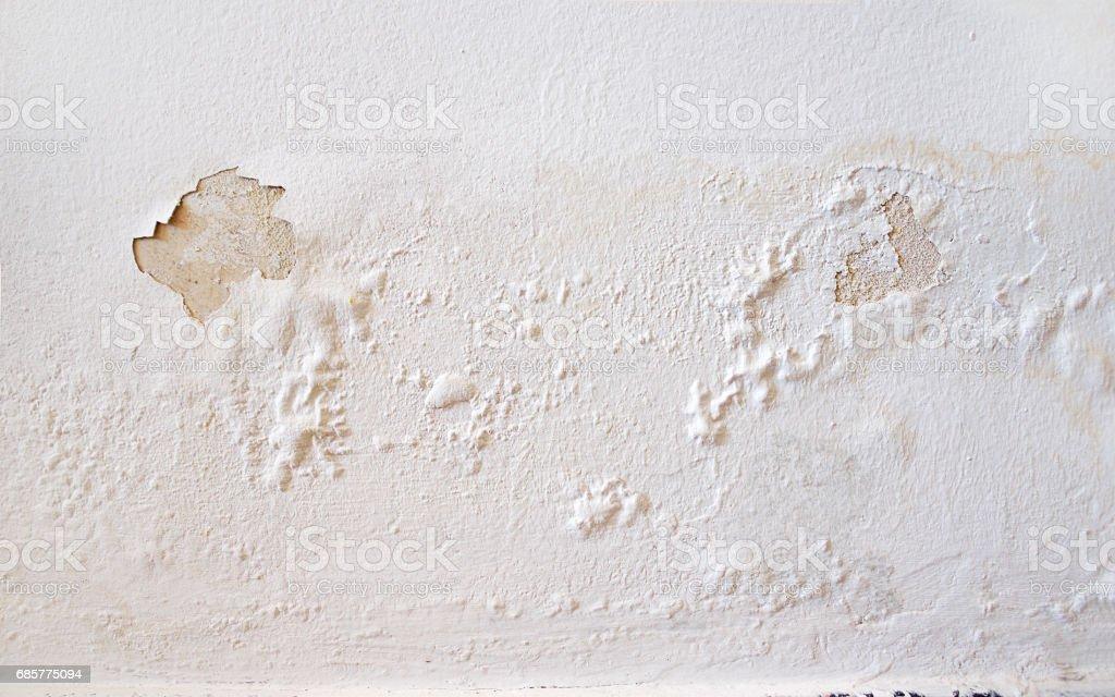 wall white stock photo