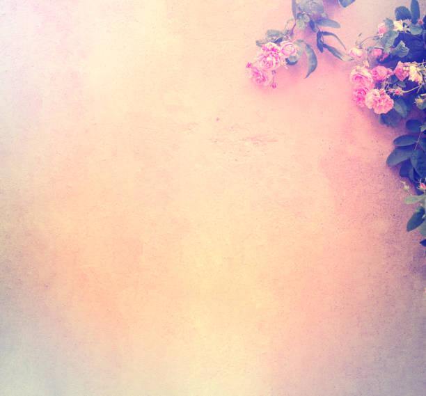 Wall with roses picture id1162223954?b=1&k=6&m=1162223954&s=612x612&w=0&h=i9drvb5ltg8cswi3fazu7 zauegltor45kyiuq9djyy=