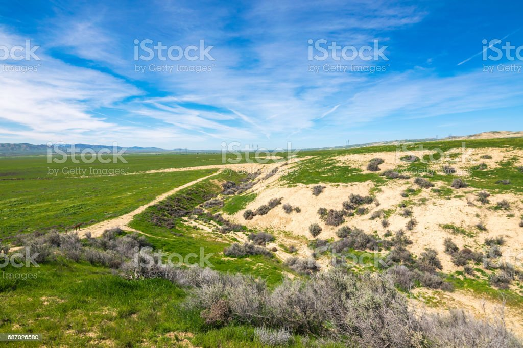 Wallace Creek, Carrizo Plain National Monument, San Andreas Fault (boundary between the Pacific Plate and the North American Plate), California USA, North America Lizenzfreies stock-foto