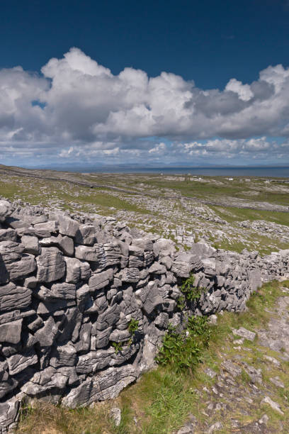 Walled Path to Dun Aonghasa (Dun Aengus) with Island Landscape, Inishmore The view north, northwest over the walled path to Dun Aonghasa (Dun Aengus) looking across karst landscape, walled fields, farms, the North Atlantic Ocean, coast of Connemara and the 12 Bens (12 Pins) mountains.  Aran Islands, County Galway, Ireland. michael stephen wills aran stock pictures, royalty-free photos & images