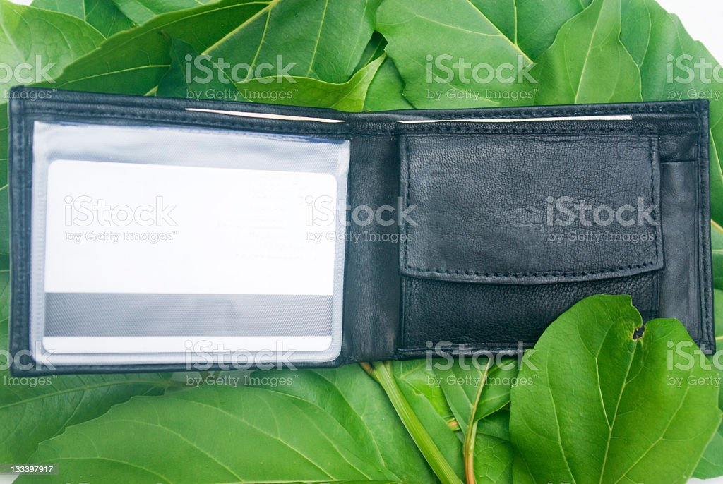 wallet on green leaf background royalty-free stock photo