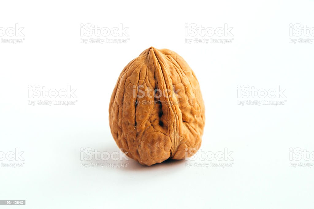 Wallnut stock photo