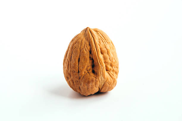wallnut - walnut stock photos and pictures