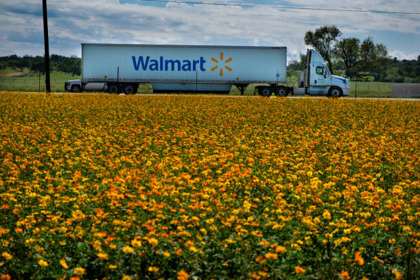 Walmart Truck 18-wheeler hauling Walmart merchandise down the highway near Fredericksburg, Texas. wal mart stock pictures, royalty-free photos & images