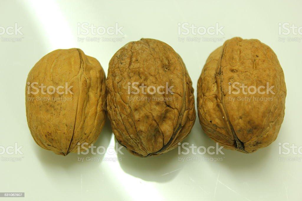 walnurs stock photo
