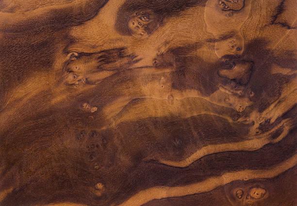 walnut burl hintergrund - nussbaumholz stock-fotos und bilder