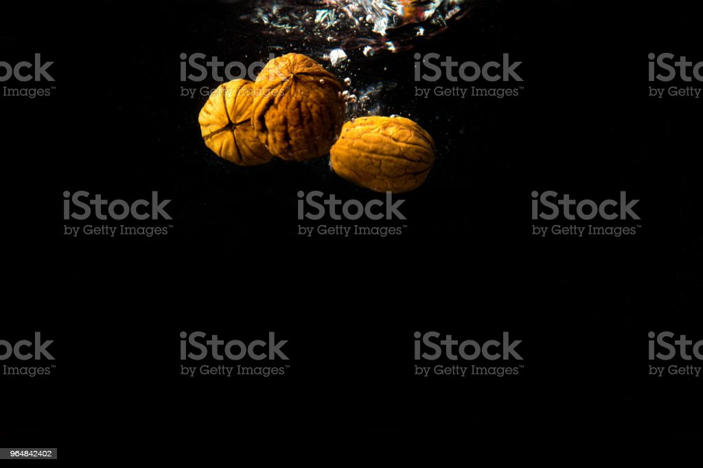 Walnut dropped into water royalty-free stock photo