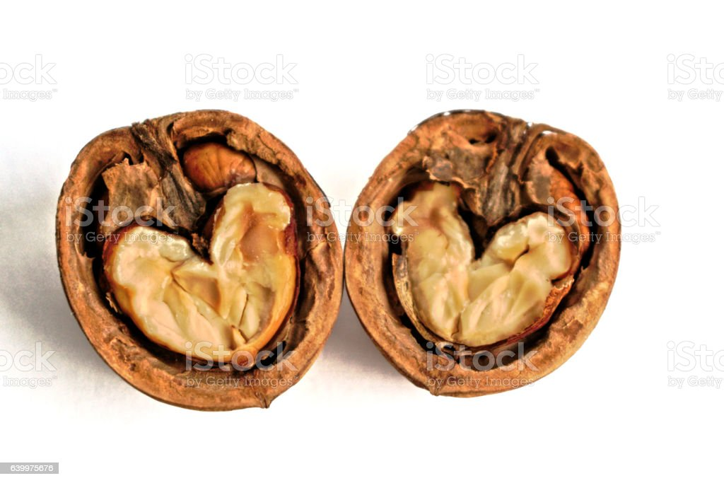 Walnut Hearts stock photo