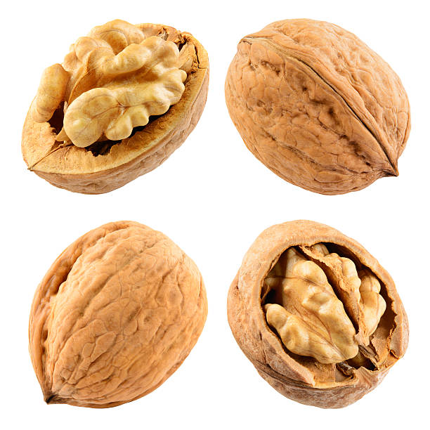 walnut isolated on the white. with clipping path. collection. - walnut stock photos and pictures